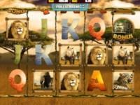 Big 5 Safari Spielautomat