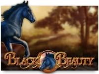Black Beauty Spielautomat