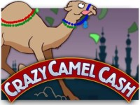 Crazy camel cash Spielautomat