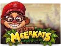 Meet the Meerkats Spielautomat