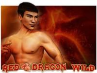 Red Dragon Wild Spielautomat