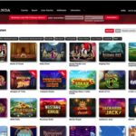 Royal Panda Casino im Test