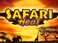 Safari Heat Spielautomat