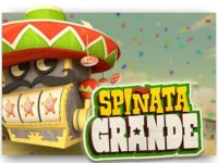 Spinata Grande Spielautomat