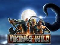 Vikings Go Wild Spielautomat