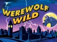 Werewolf Wild Spielautomat