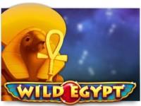 Wild Egypt Spielautomat