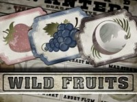 Wild Fruits Spielautomat