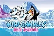 Wild Gambler Arctic Adventure Spielautomat