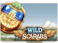 Wild Scarabs Spielautomat