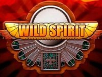 Wild Spirit Spielautomat