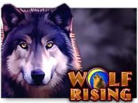 Wolf Rising Spielautomat